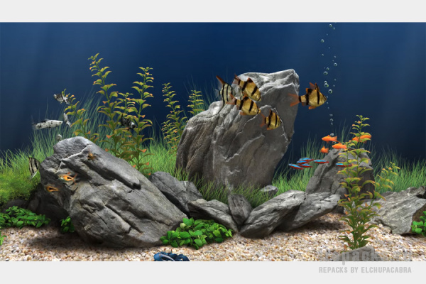 Dream Aquarium 1.293 (Repack & Portable)