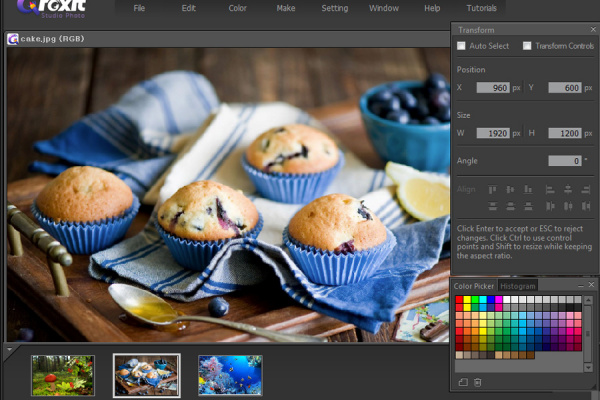 Foxit Studio Photo 3.6.6.916 (Repack)